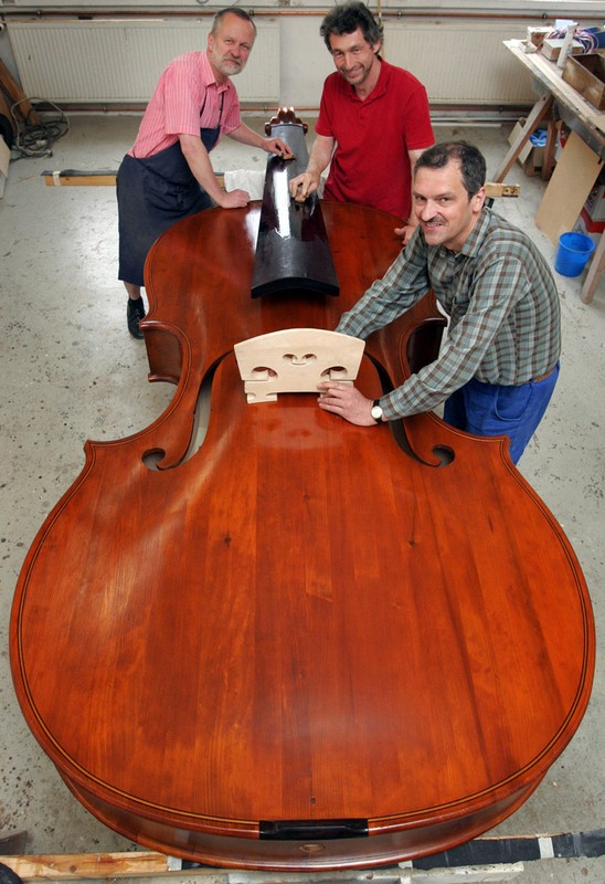 Worlds largest playable violin